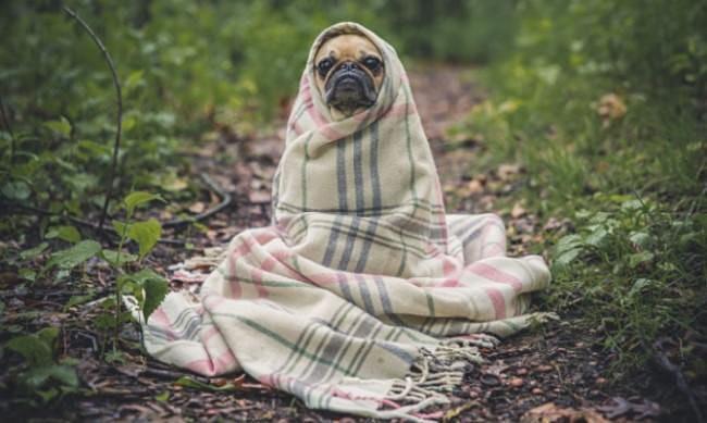Stress relief using Breath meditation